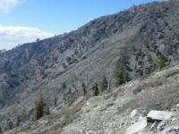 Side of Dawson Peak from the Dawson Peak Trail down toward Fish Fork - Wrightwood CA Mountains