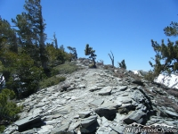 Climbing the North Backbone Trail on Dawson Peak - Wrightwood CA Mountains