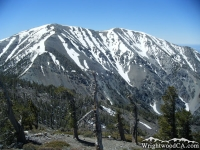 San Gabriel Mountains In Wrightwood California