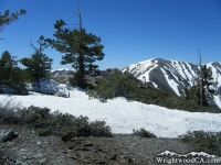 Snow-capped Mt Baldy from North Backbone Trail on Pine Mountain - Wrightwood CA Mountains
