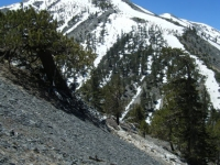 Mt Baldy as viewed from North Backbone Trail on descent from Dawson Peak - Wrightwood CA Mountains