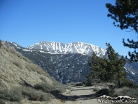 Mt Baldy peaking above Pine Mountain Ridge from the Blue Ridge Road - Wrightwood CA Mountains