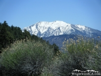 Mt Baldy in early Spring - Wrightwood CA Mountains