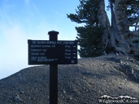 Trail junction near peak of Mt Baden Powell - Wrightwood CA Mountains