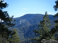 Wright Mountain/Blue Ridge framed with trees - Wrightwood CA Mountains