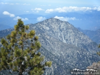 Iron Mountain framed with a pine tree - Wrightwood CA Mountains