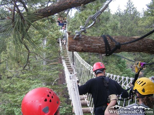 Big Pines Pic