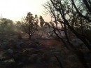 Oasis Fire - Wrightwood CA Photos