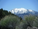 Mt. Baldy in Spring as viewed from Grassy Hollow area. - Wrightwood CA Photos