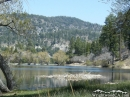 Jackson Lake in Spring. - Wrightwood CA Photos