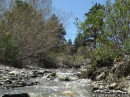Creek flowing through Wrightwood in Spring. - Wrightwood CA Photos