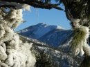 Pine Mountain framed in frozen pine tree branches. - Wrightwood CA Photos