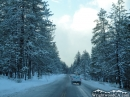 Driving on Highway 2 during a Winter storm. - Wrightwood CA Photos
