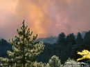 Fire and smoke around Circle Mountain. - Wrightwood CA Photos