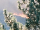 Flames from Sheep Fire climbing Circle Mountain. - Wrightwood CA Photos