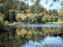 Jackson Lake in the Fall - Wrightwood CA Photos