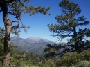 On the forestry road West of Jackson Flats campground, look East toward Baldy. - Wrightwood CA Photos