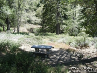 Picnic Table in Arch Picnic Area - Wrightwood CA Mountains