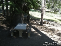 Picnic Table under a shady tree in Arch Picnic Area - Wrightwood CA Mountains