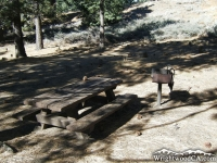 Picnic Table in Grassy Hollow Picnic Area - Wrightwood CA Mountains