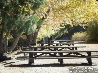 Picnic Tables in the Jackson Lake Picnic Area - Wrightwood CA Mountains