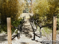 Walkway to Mescal Picnic Area - Wrightwood CA Mountains